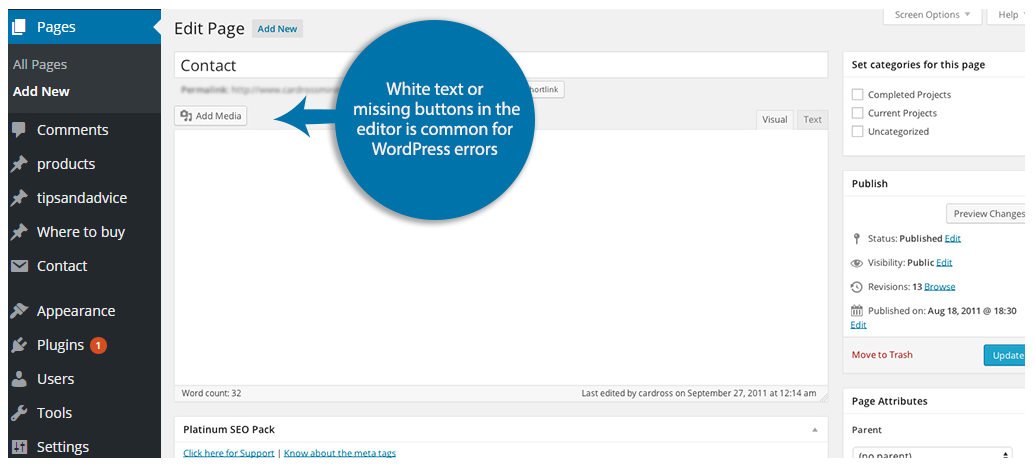 White Text And Missing Buttons In WordPress