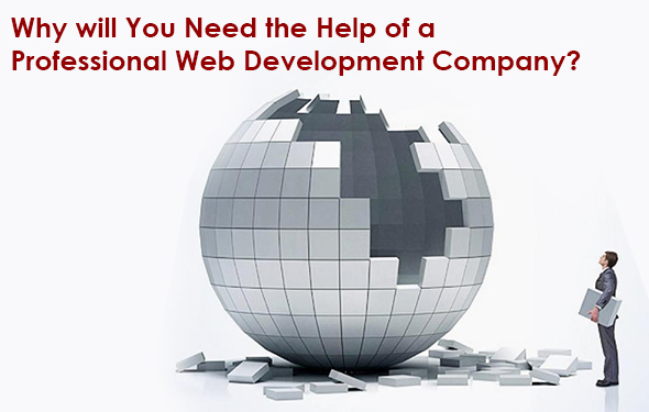Why will You Need the Help of a Professional Web Development Company