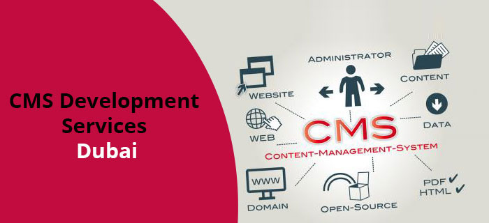 CMS Development Services Dubai UAE