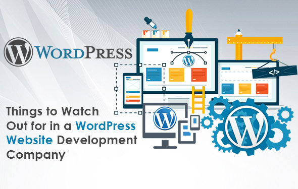Things to Watch Out for in a WordPress Website Development Company