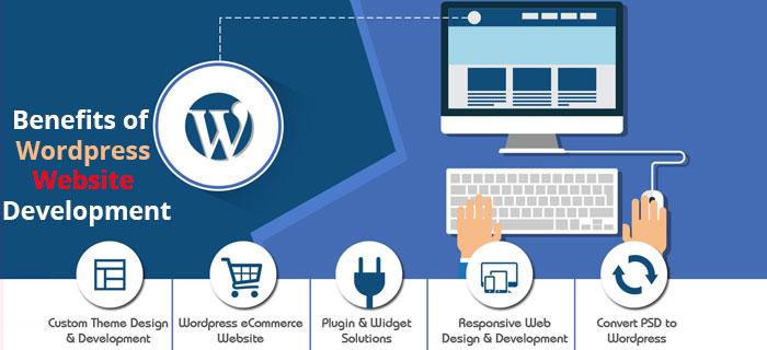 wordpress website development Dubai