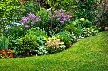 Landscaping Business Dubai