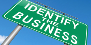 Identify the Nature of Your Business
